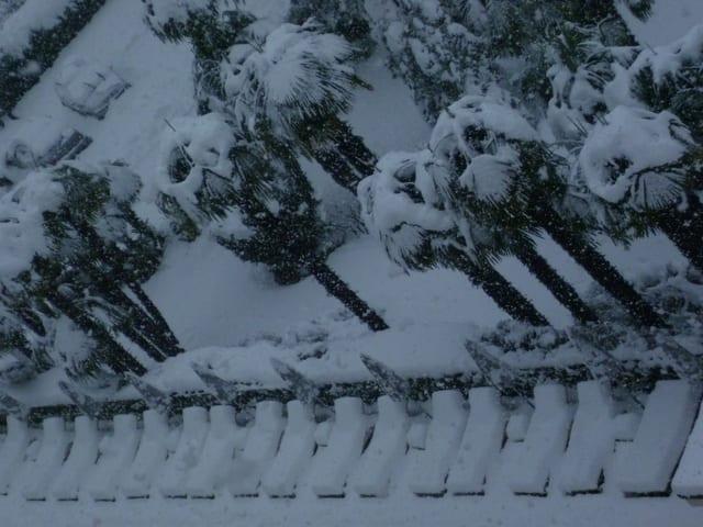 Liegestühle Schneebedeckt