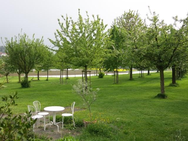 Obstbäume, Tische und Stühle