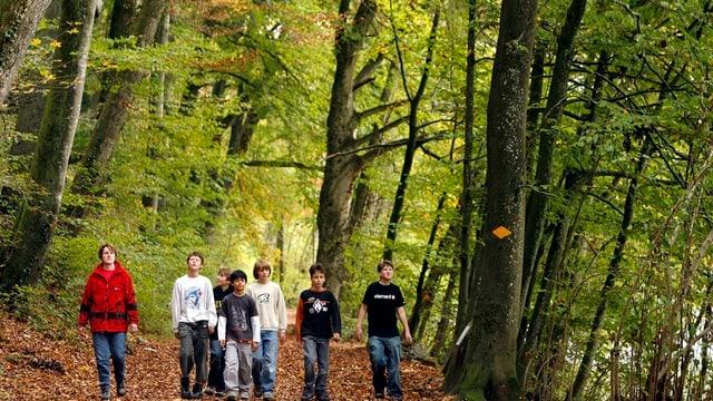 Eine Gruppe von Kindern spaziert auf einem Waldweg.