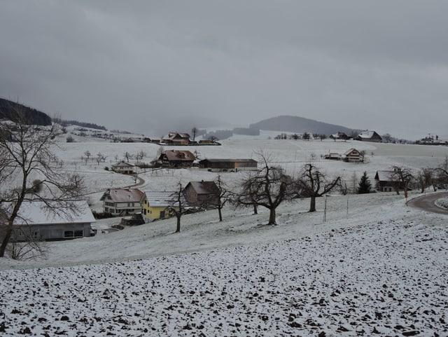Frischer Schnee auf der Landschaft, teils drückt das Grass hindurch. Es liegen Bauernhöfe und einzelne Obstbäume im hügeligen Gelände verstreut.