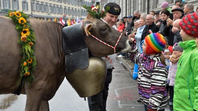 Kuh bei Festumzug
