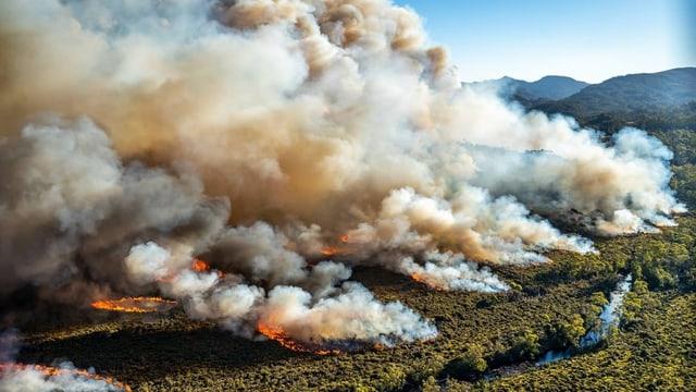Buschbrand auf Tasmanien