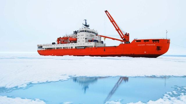 Grosses Schiff umgeben von Eis.