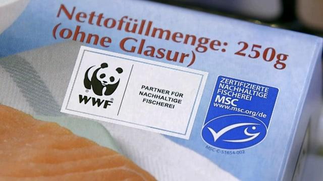 MSC – Label für nachhaltige Fischerei