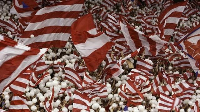 Fans von Roter Star Belgrad