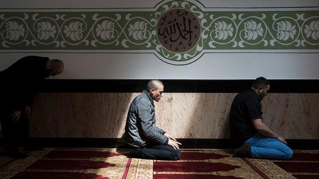 Männer auf den Knien beim Beten.