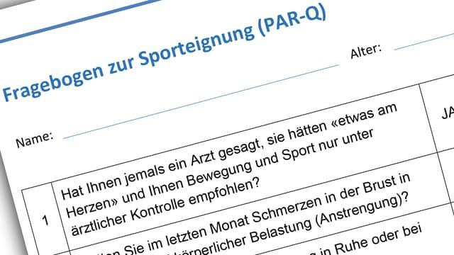 Screenshot des Fragebogens, der in diesem Artikel zum Download bereitsteht.