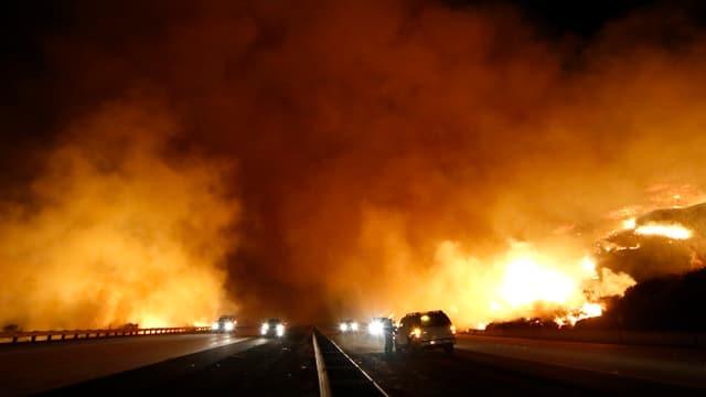 Waldbrände auch in den USA