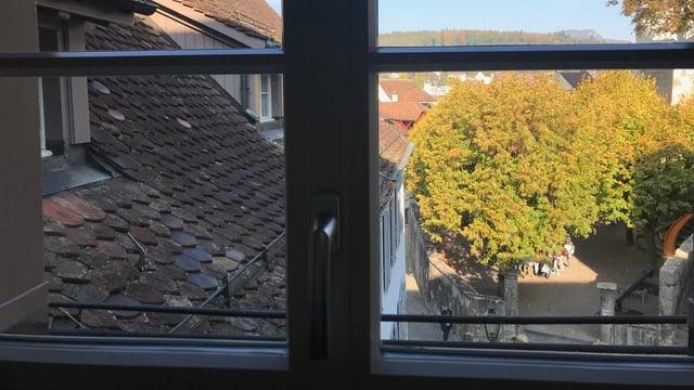 Blick aus einem Fenster auf die Dächer einer Altstadt.
