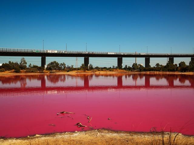 Pinker See in der nähe von Melbourne.