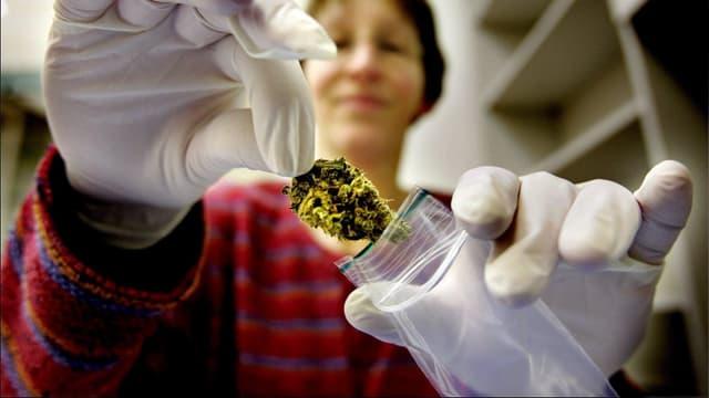 Audio «Cannabis als Medikament» abspielen