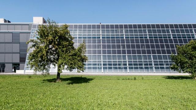 Solarflächen am Meyer-Burger-Hauptsitz in Thun