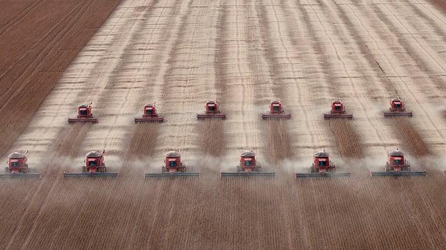 Soja-Gewinn im grossen Stil: Ernte in Mato Grosso, Brasilien