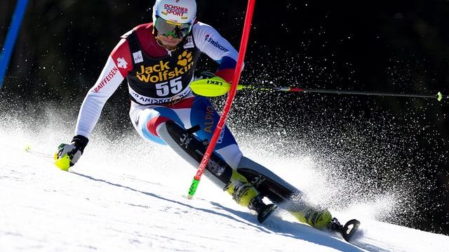 Gini bei einem Slalomlauf