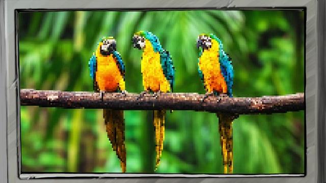Video «Frag Fred: Was sind Pixel? (2/8)» abspielen