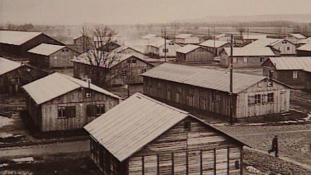 Video «Concentrationslager Büren an der Aare» abspielen