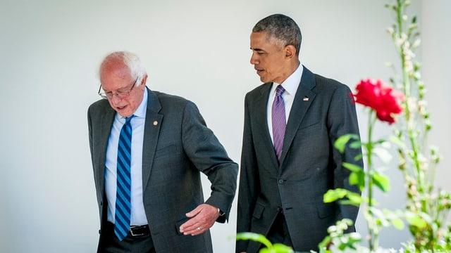 Obama im Gespräch mit Sanders