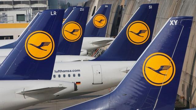 Flugzeuge aufgereiht mit Lufthansa-Logo