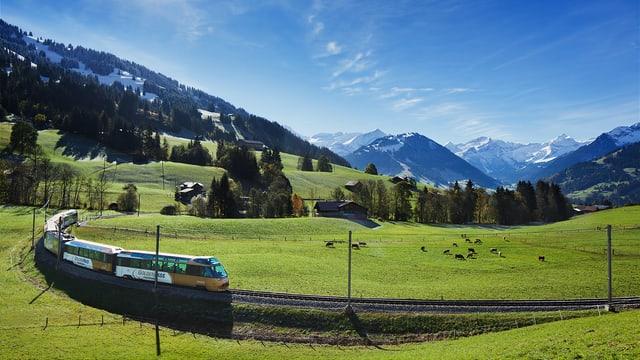 Golden-Pass-Zug