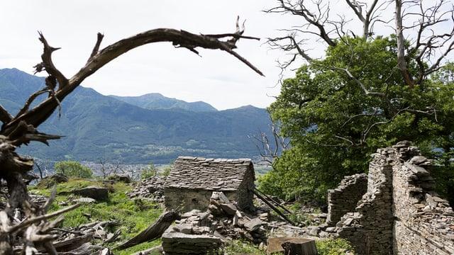 verlassenes Haus, Ruine