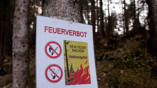 Feuerverbots-Tafel in einem Bergwald
