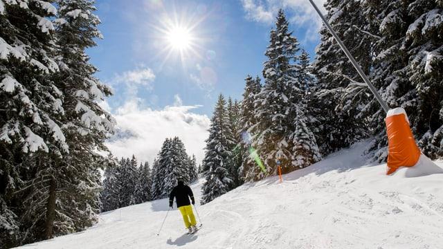 Purtret d'in skiunz sin ina pista.