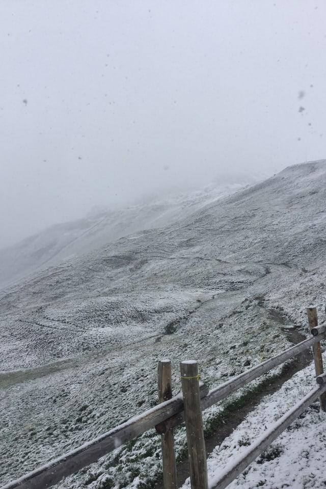 Am 20. Juni gab es Schnee in Ftan im Unterengadin.