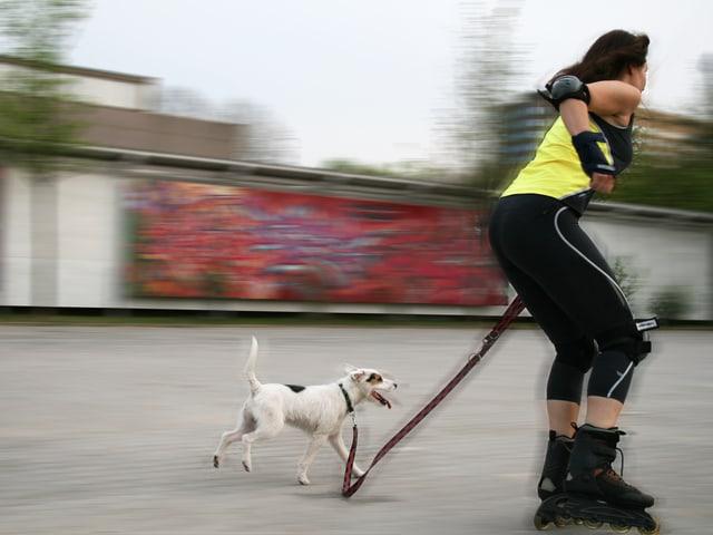 Frau auf Inline-Skates mit Hund.