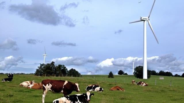 Video «Energiestrategie 2050: überfällig oder übertrieben?» abspielen