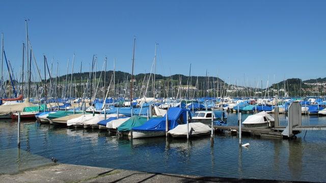 Segelboothafen Tribschenhorn in Luzern.