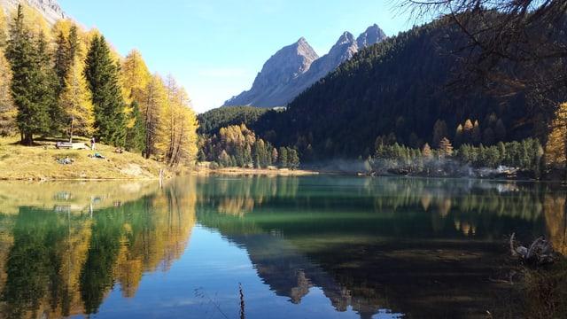 Berge, Wald und ein See in Lai Da Palpuogna