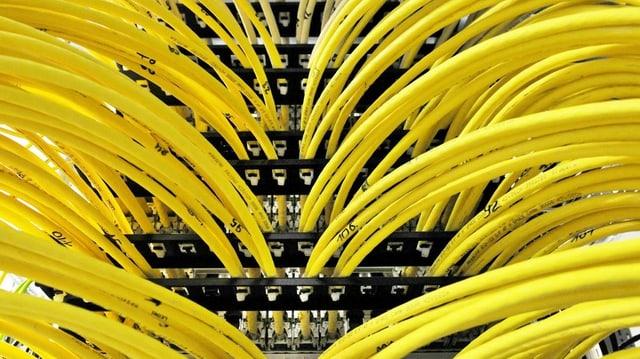 Kabel eines Computers.