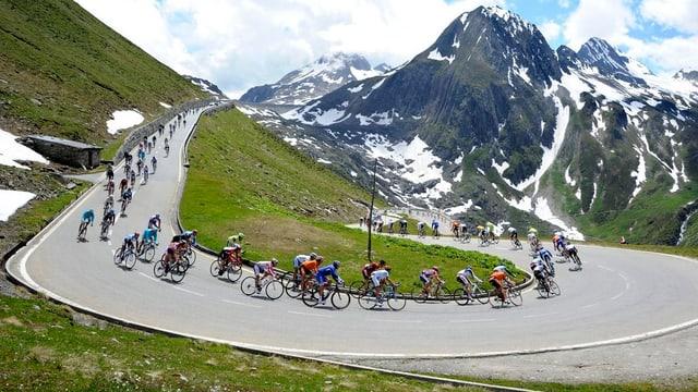 Auch dieses Jahr wird auf dem Nufenenpass (2478m) der höchste Punkt der Tour erreicht werden.