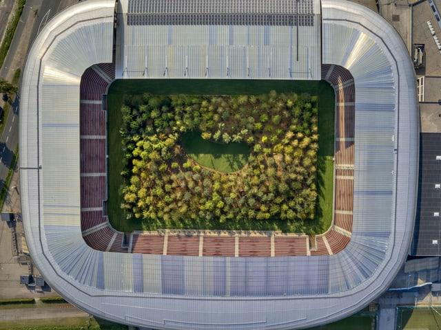 Eine Aufnahme eines Fussballstadions von oben aus der Luft. Dort wo sonst der grüne Spielfeldrasen ist, steht ein Wald mit einer kleinen Lichtung.