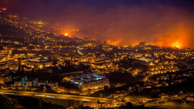 Vista sin la citad Funchal ch'è circumdada da flommas.
