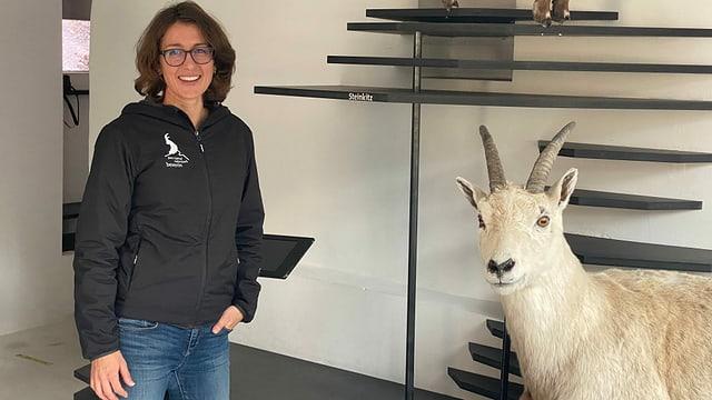 Ramona Liebeton la directura dal Parc Natiral Beverin: Qua en l'exposiziun Capricorn en il Center da Capricorns a Vargistagn.