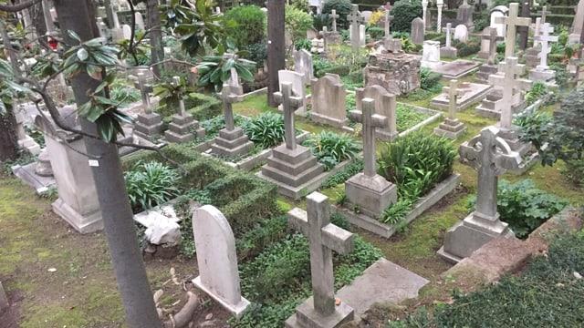 Blick auf verschiedene Gräber des Friedhofs.