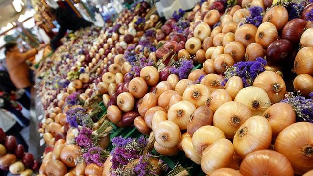 Zwiebeln und Blumen in Auslage liegend