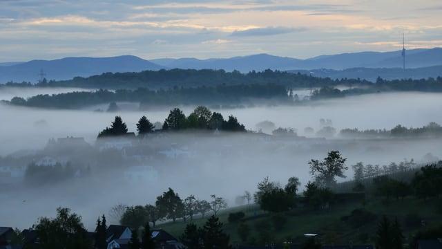 Flache Nebelschwaden bei Ettingen.