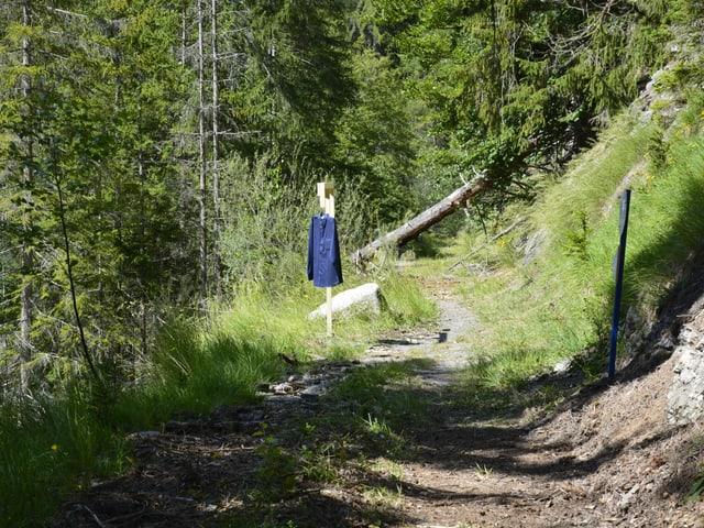 L'ovra d'art da «invisibel art» fatg da l'artist  Bruno Jakob sin via envers il vegl tunnel en Stussavgia.