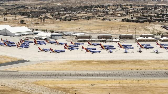 Dutzende 737-Max-Maschinen der Southwest Airlines sind in Victorville in Südkalifornien parkiert.