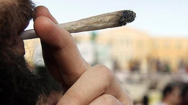 In um fima cannabis.