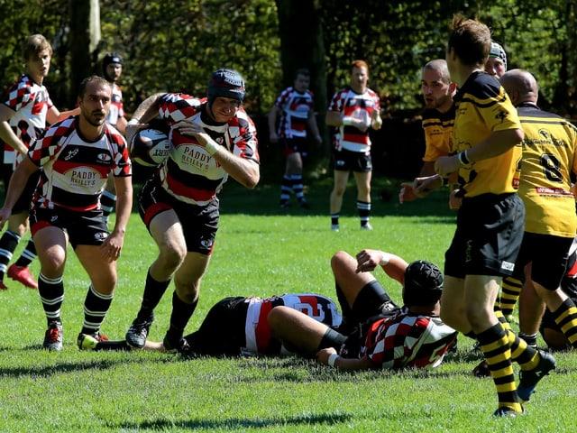 Bild Rugby
