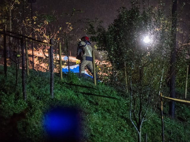 Ein Rettungsarbeiter ist an einem umgestürzten Baum zugange, der von einem Scheinwerfer beleuchtet ist