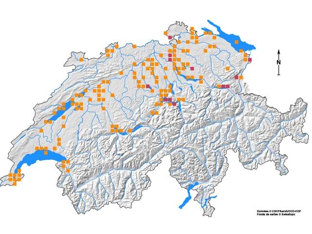 Karte der Verbreitung der Schweizer Bachmuschel
