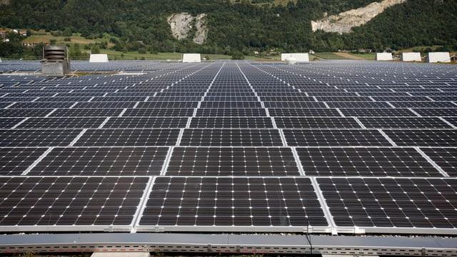 Ein riesengrosses Solardach in Neuendorf