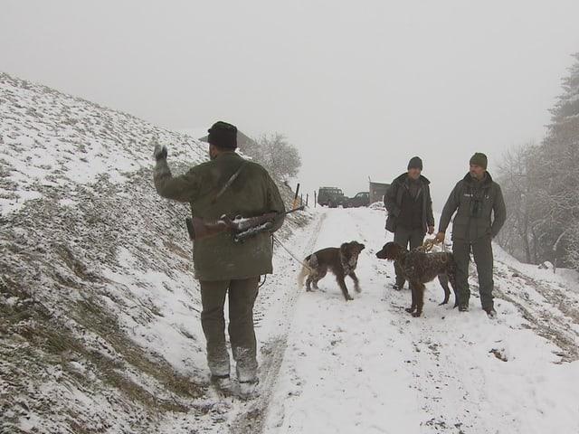 Suche mit Jagdhunden nach einem angeschossenen Hirschen auf der Sonderjagd.