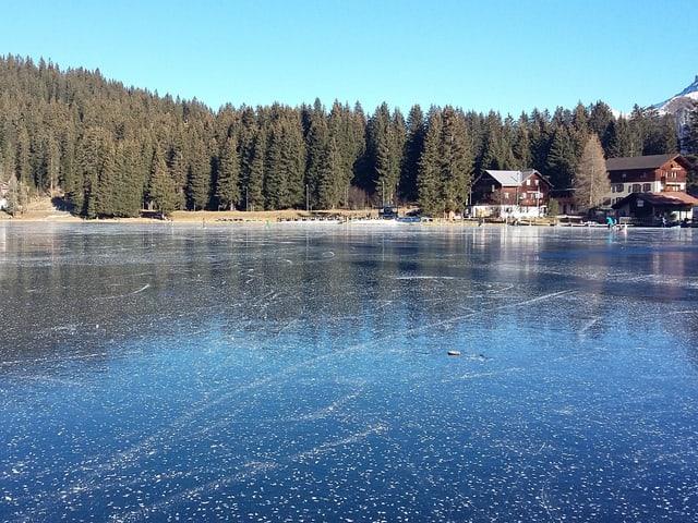 Der Arosasees ist zugefroren, das Eis ist spiegelglatt, dahinter Tannen am Ufer und zwei Häuser.