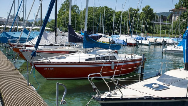 Segelboote reihen sich am Hafen Enge in der Stadt Zürich
