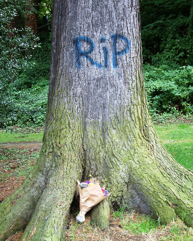 """Auf einem Baumstamm steht """"RIP"""", davor liegt ein Blumenstrauss."""